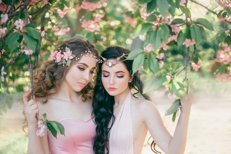 Dois duendes surpreendentes com um close-up delicado da composição da mola Louro e morena com por muito tempo, cabelo saudável, o imagem de stock