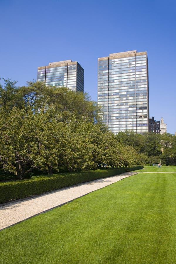 Dois edifícios altos e um parque fotos de stock