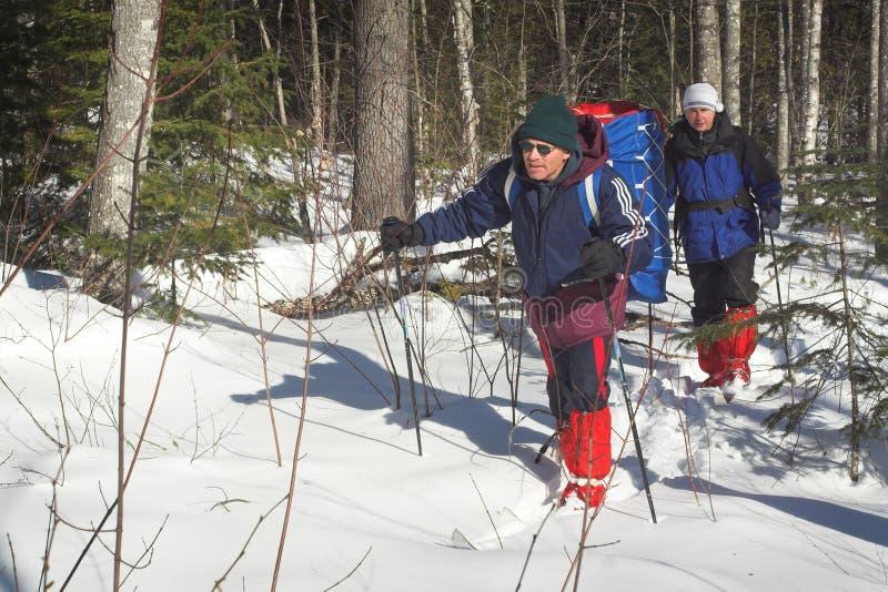 Dois esquiadores fotografia de stock