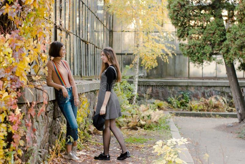 Dois estudantes bonitos novos estão estando no parque do outono fotografia de stock royalty free