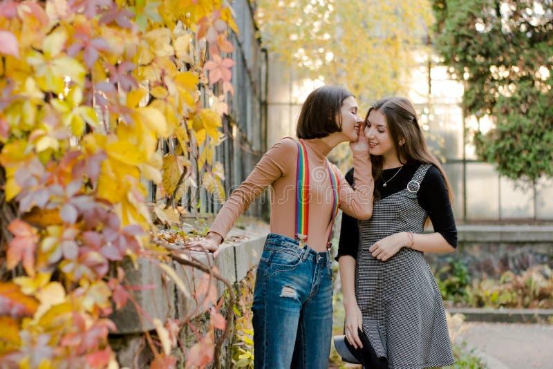 Dois estudantes bonitos novos no parque do outono fotos de stock royalty free