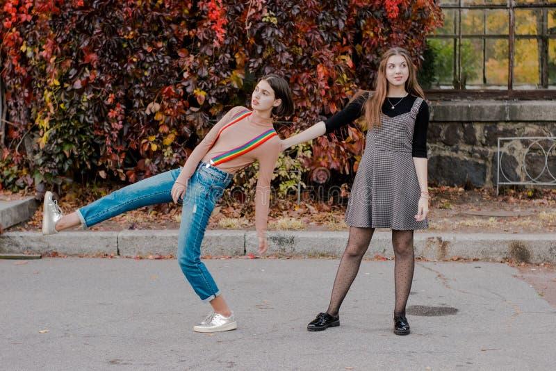 Dois estudantes bonitos que andam no parque do outono imagem de stock