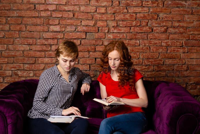 Dois estudantes que fazem trabalhos de casa junto foto de stock royalty free