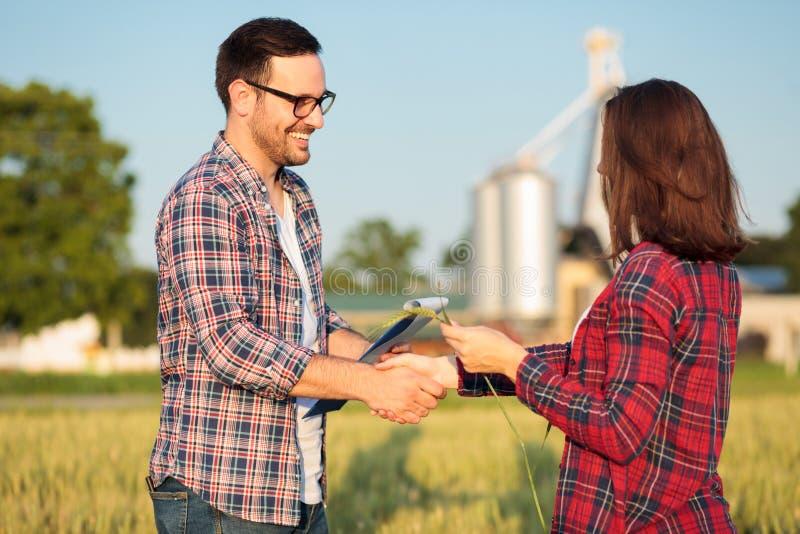 Dois fazendeiros novos felizes ou agrônomos fêmeas e masculinos que agitam as mãos em um campo de trigo imagem de stock royalty free