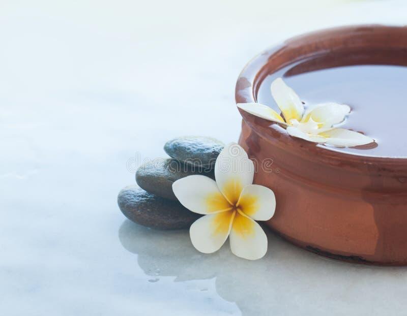 Dois flores e termas tropicais ajustaram-se para o tratamento da massagem imagens de stock royalty free