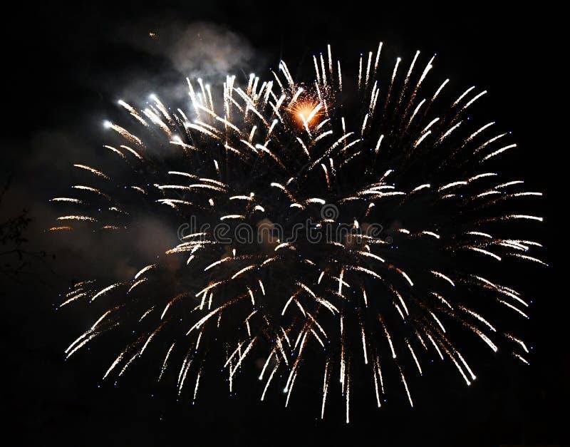Dois fogos de artifício imediatamente imagem de stock