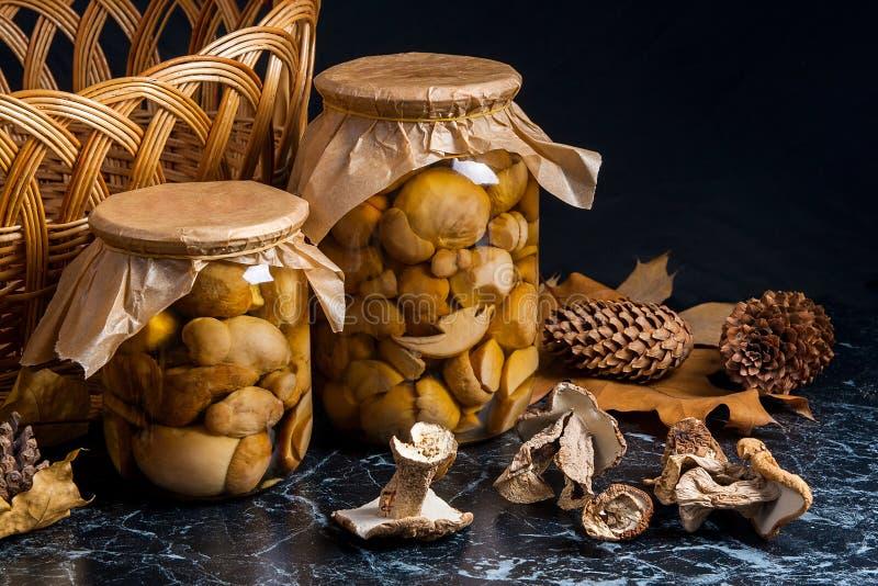 Dois frascos de vidro com os cogumelos conservados selvagens e a MU selvagem branca seca imagem de stock