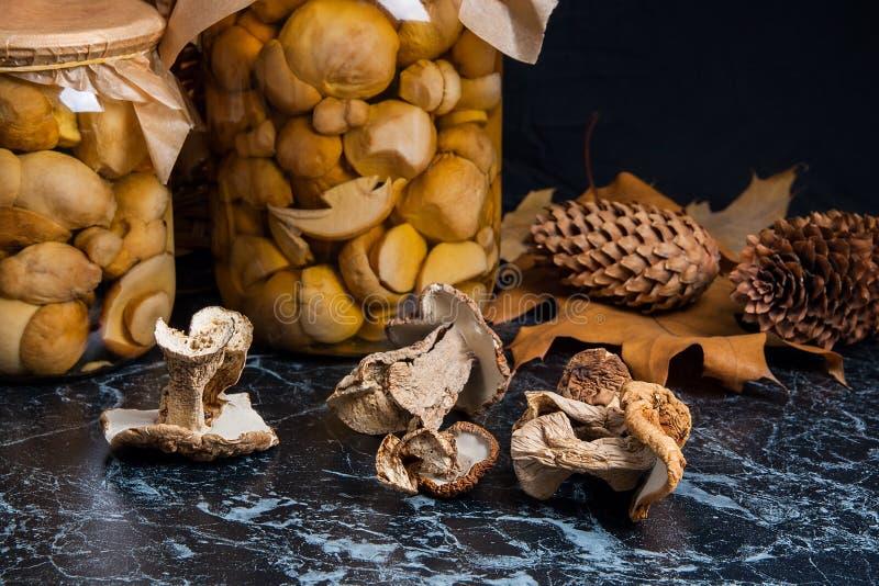 Dois frascos de vidro com os cogumelos conservados selvagens e a MU selvagem branca seca imagens de stock royalty free