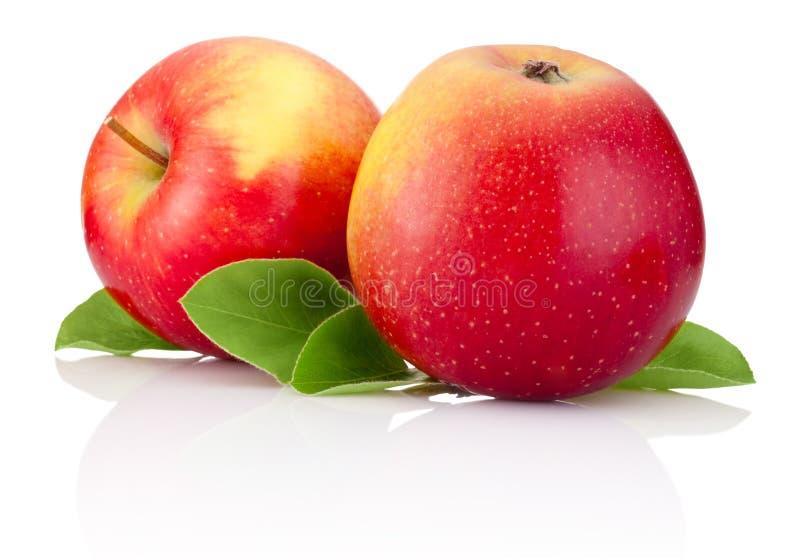 Dois frutos das maçãs e folhas vermelhos do verde isoladas foto de stock royalty free