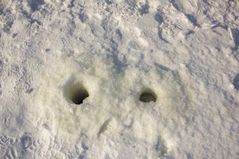 Dois furos de pesca no gelo na neve branca entre as pegadas fotografia de stock