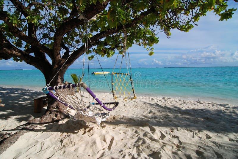 Dois hammocks e mares foto de stock