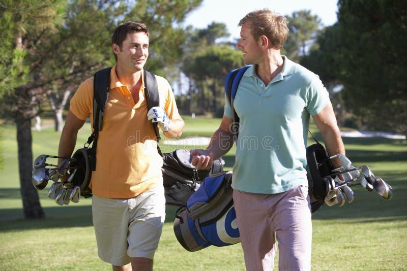 Dois homens que apreciam o jogo do golfe imagem de stock royalty free