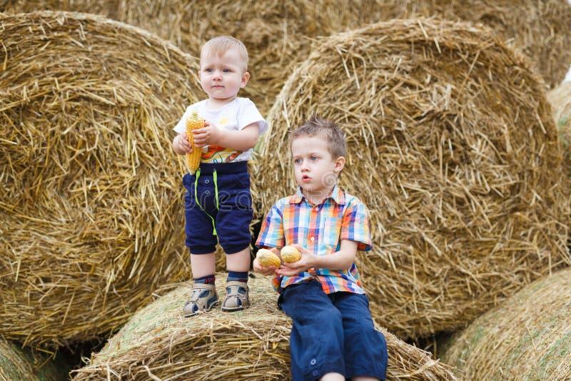Dois irmãos em um campo imagem de stock
