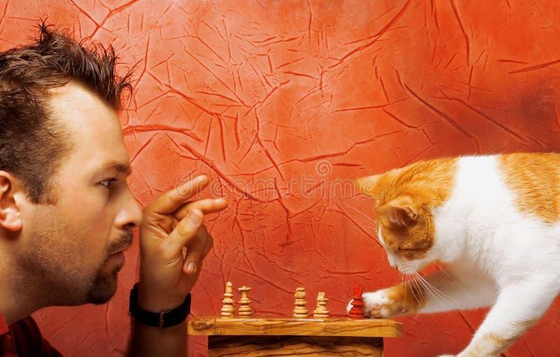 Dois jogadores de xadrez fotos de stock royalty free