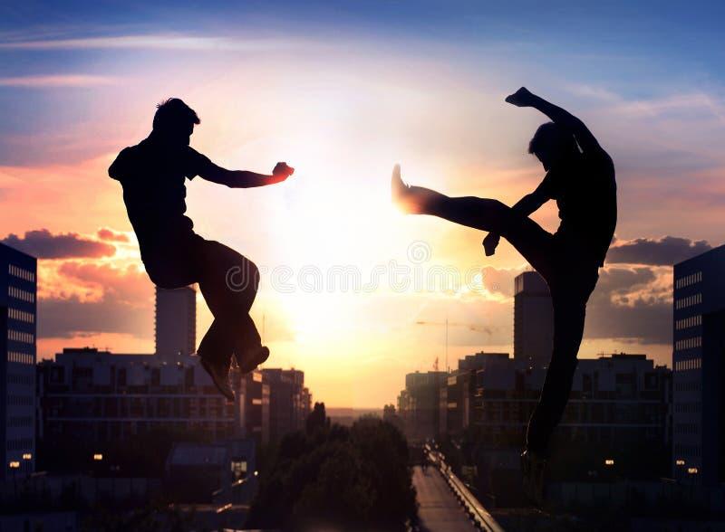 Dois lutadores do capoeira foto de stock royalty free