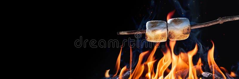Dois marshmallows em uma vara imagem de stock