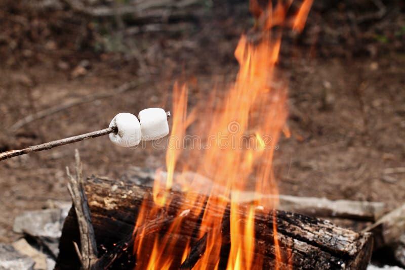 Dois marshmallows em uma vara sobre uma fogueira imagens de stock