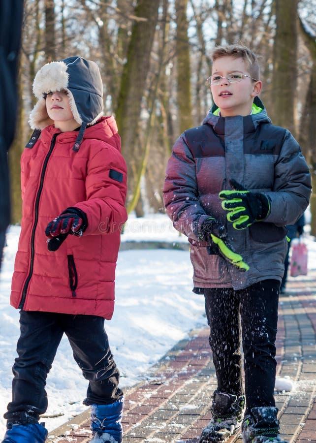 Dois meninos adoráveis no parque do inverno imagens de stock