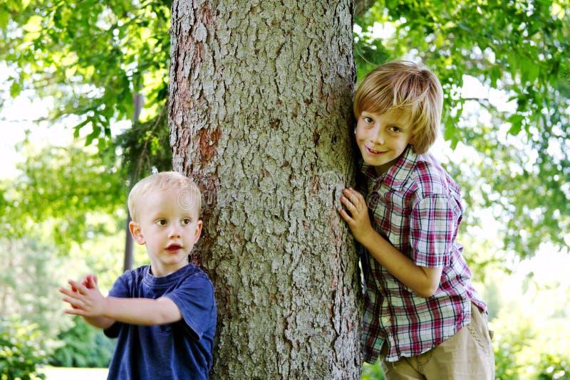 Dois meninos ao lado da árvore imagem de stock
