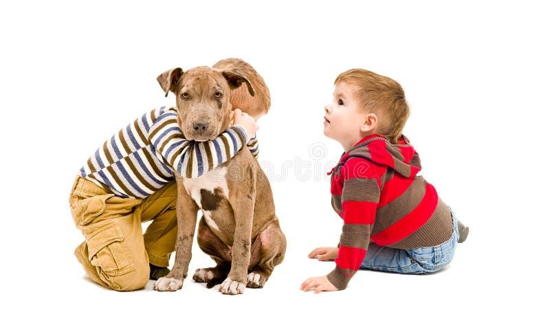 Dois meninos e um cachorrinho do pitbull que joga junto foto de stock royalty free