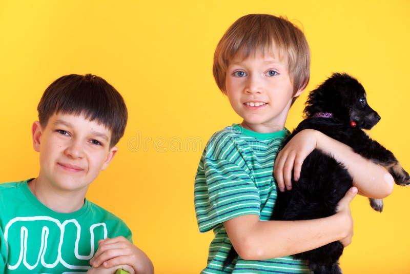 Dois meninos e um filhote de cachorro imagem de stock royalty free