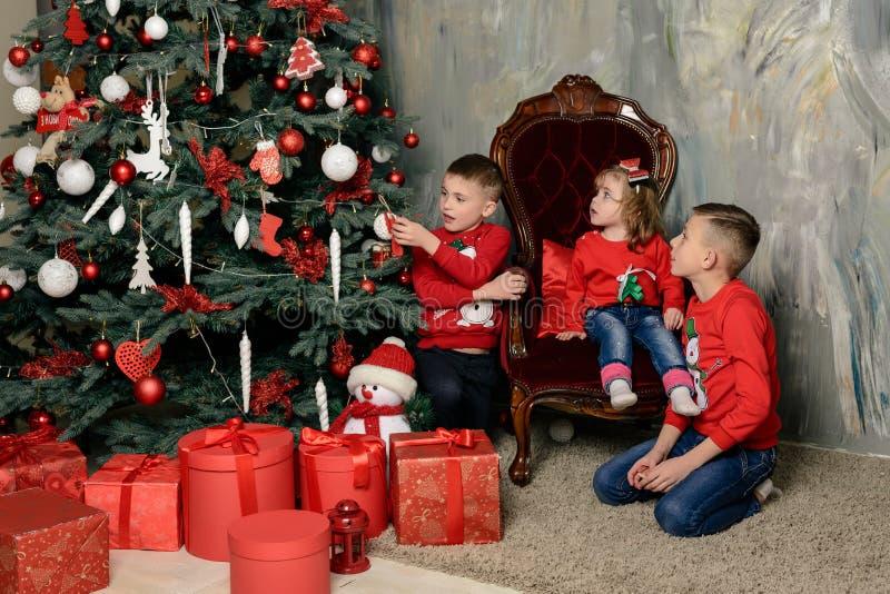 dois meninos felizes na diferença festiva dos abeto olham os presentes fotos de stock royalty free