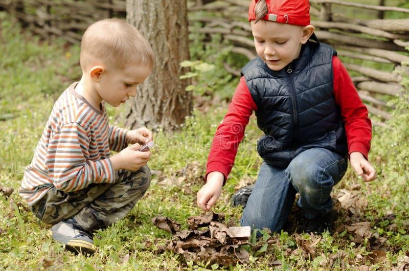Dois meninos novos que jogam com fósforos fotografia de stock