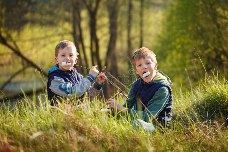 Dois meninos que guardam a vara e aprontam-se comendo marshmallows roasted fotografia de stock royalty free