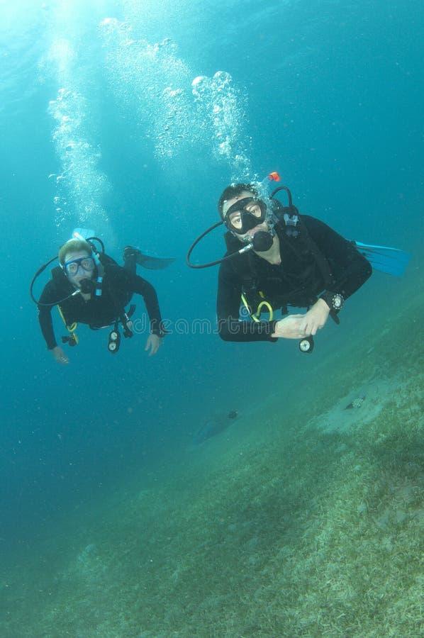 Dois mergulhadores de mergulhador masculinos fotografia de stock royalty free