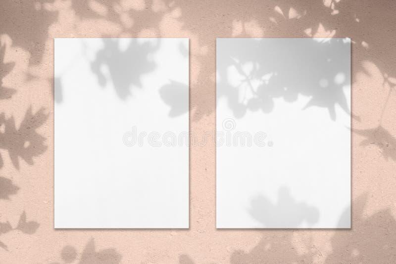 Dois modelos verticais brancos vazios do cartaz do retângulo com sombras das folhas fotografia de stock