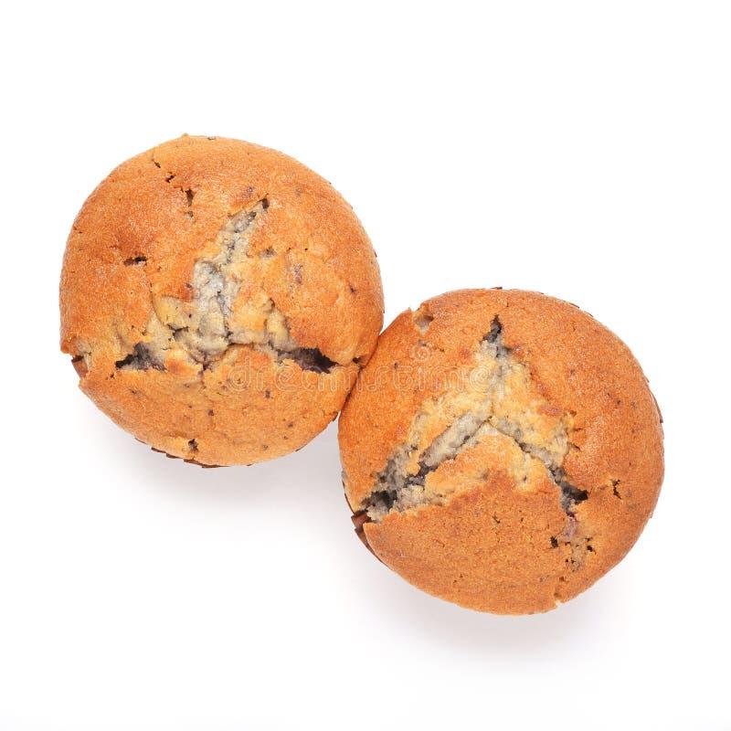 Dois muffin de blueberry foto de stock royalty free