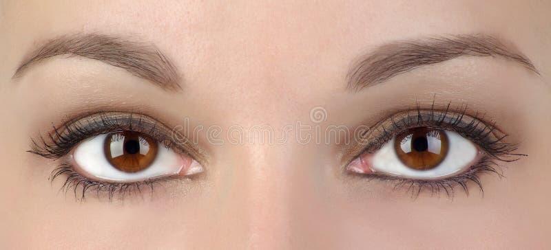 Dois olhos fotografia de stock