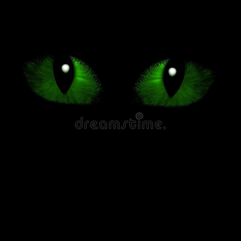 Dois olhos felinos ilustração royalty free
