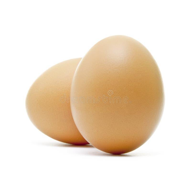 Dois ovos de Brown imagem de stock royalty free