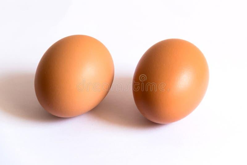 Dois ovos de Brown no fundo branco fotos de stock
