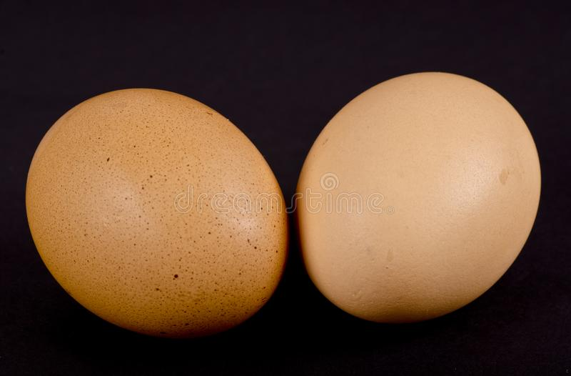 Dois ovos de casca escura da galinha fotos de stock