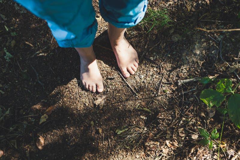 Dois pés fêmeas estão estando no assoalho da floresta imagem de stock