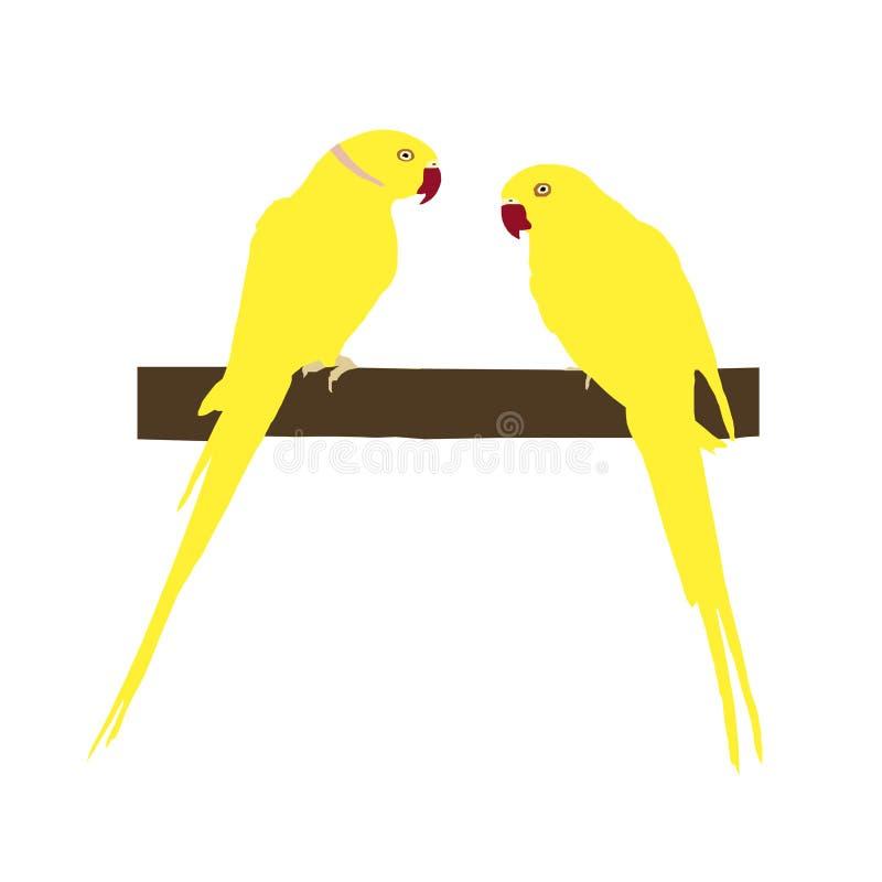 Dois papagaios amarelos brilhantes sentam-se em um ramo, vetor ilustração royalty free