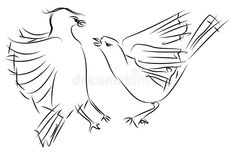 Dois pardais que lutam, vetor do esboço ilustração royalty free