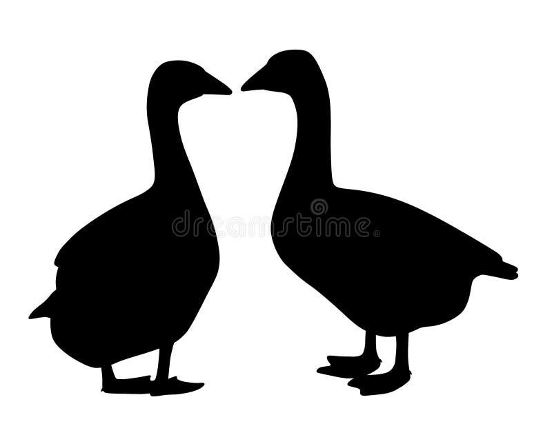 Dois pares dos gansos ilustração stock