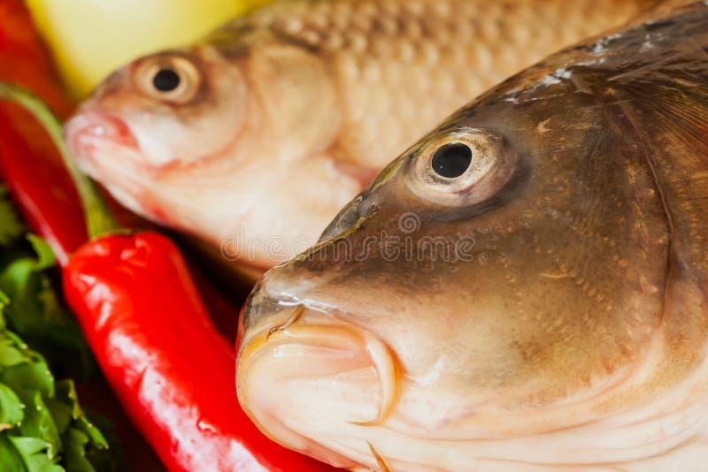 Dois peixes, carpas e crucian crus frescos do rio imagem de stock royalty free