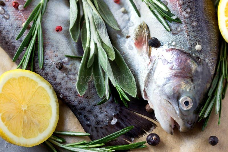 Dois peixes crus Truta fresca com limões e verdes imagens de stock