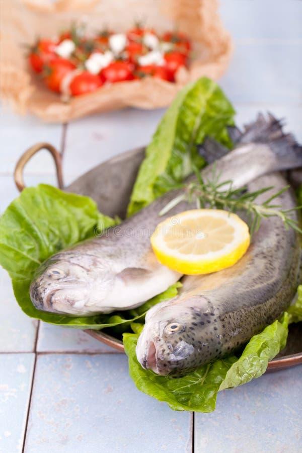 Dois peixes frescos da truta em uma bandeja velha imagem de stock