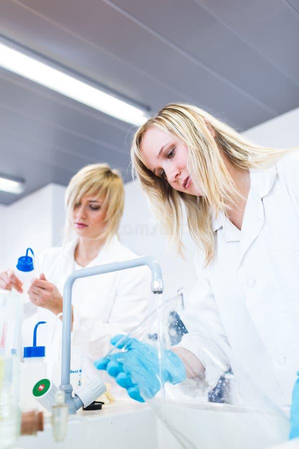 Dois pesquisadores fêmeas que trabalham em um laboratório fotografia de stock royalty free