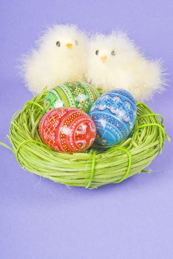 Dois pintainhos e ovos de Easter foto de stock