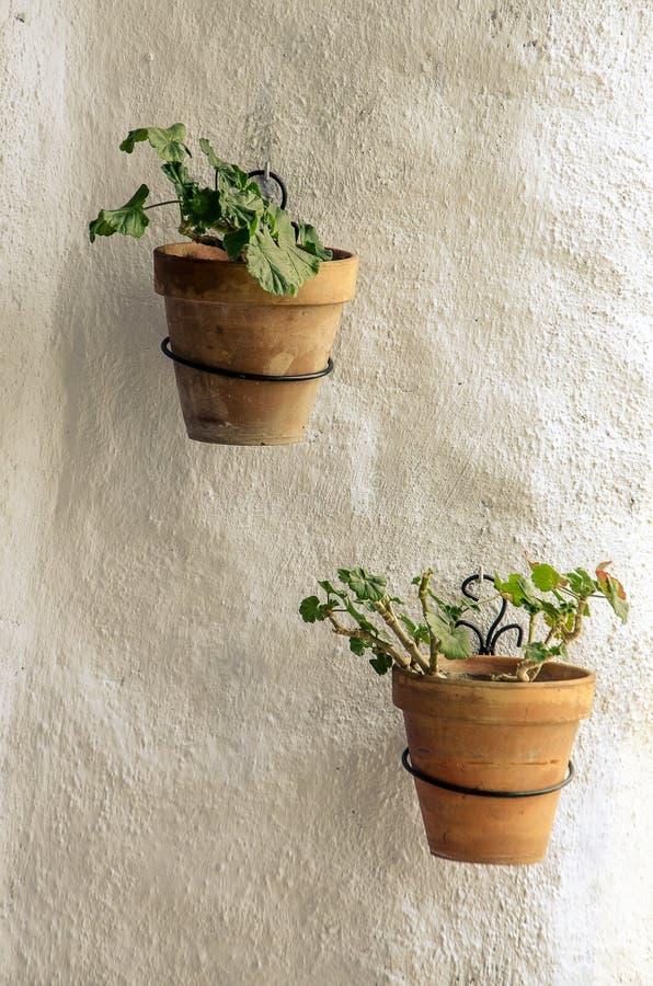 Dois potenciômetros de flor cerâmicos que penduram de uma parede branca imagem de stock royalty free
