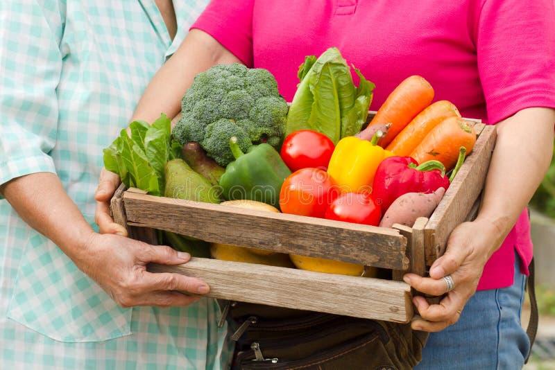 Dois que a mulher é levam vegetal orgânico fresco caseiro completamente na caixa de madeira pronta à entrega imagem de stock