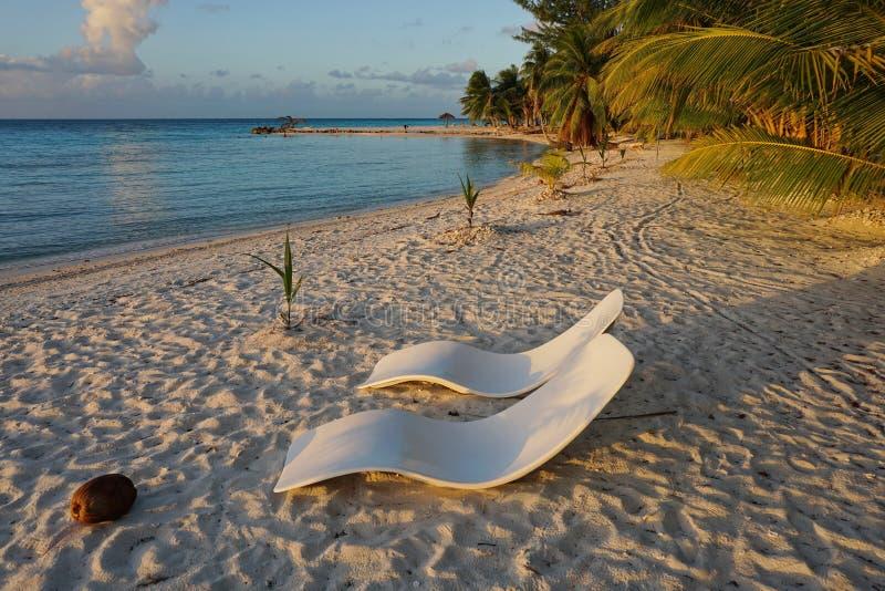 Dois sunloungers na praia no crepúsculo Polinésia francesa imagem de stock royalty free