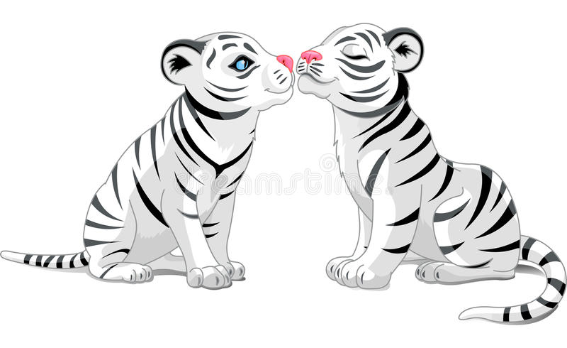 Dois tigres brancos no amor ilustração do vetor