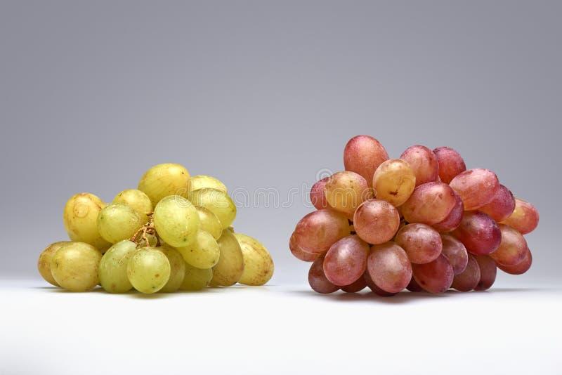Dois tipos de uvas fotografia de stock
